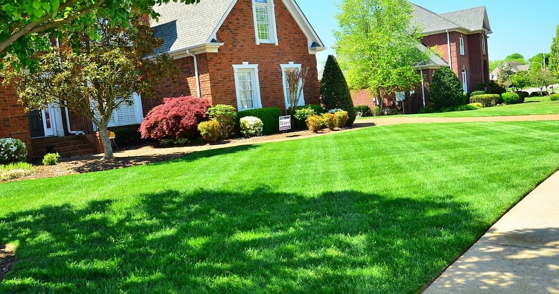 neatly trimmed yard